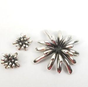 Zina Sterling Firecracker Brooch & Earring Set